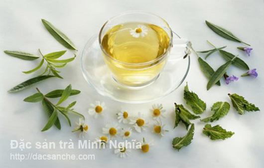 Pha trà thảo dược hoa cúc, cỏ ngọt