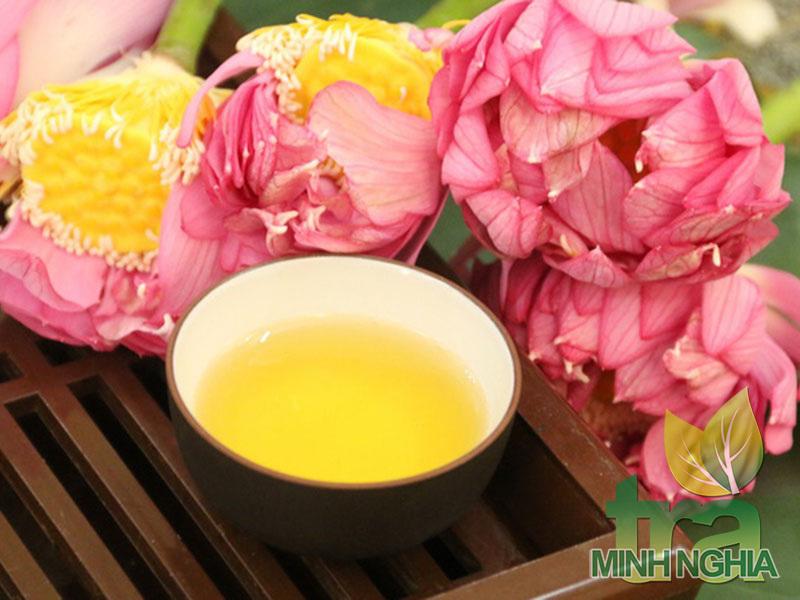 Hướng dẫn ướp trà sen truyền thống thơm ngon tuyệt đỉnh